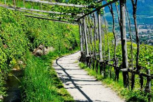 Waalwege Südtirol Sommer Calma