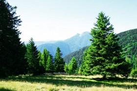 Wandergebiet Vigiljoch